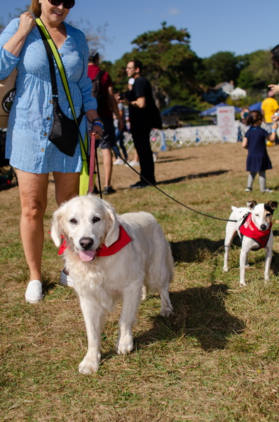 2019POTD BMalin 03_Dogs-Owners DSC_0313.JPG